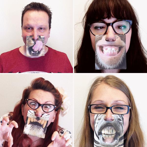 animal face coasters