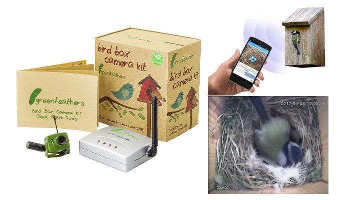 bird box camera 1
