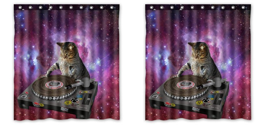 cat DJ shower curtain