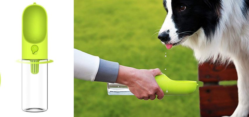 dog water bottle 1