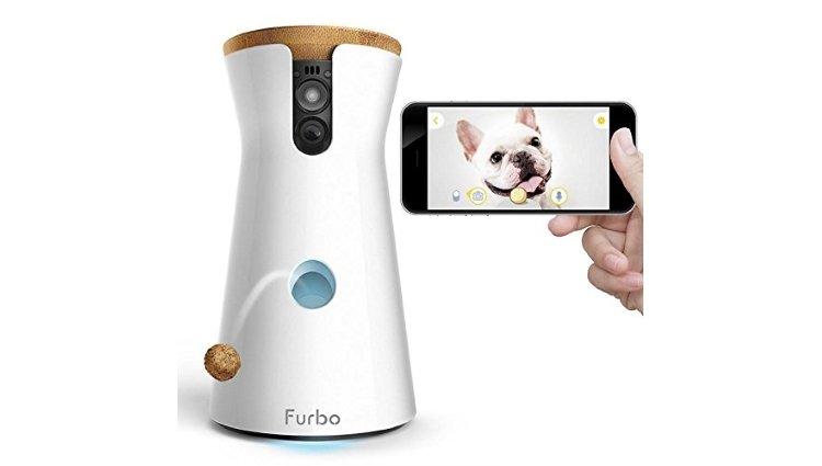 furbo dog monitor 1