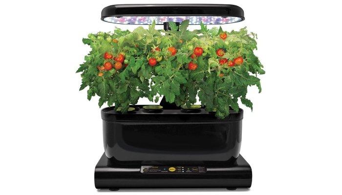 home hydroponics kit