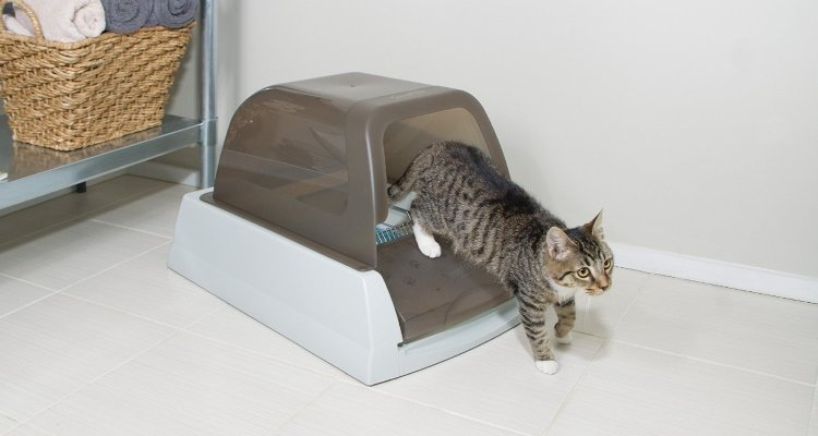 Self Cleaning Cat Litter Tray